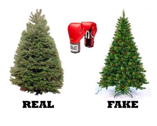 POLL: Real Christmas tree or fake Christmas tree? | The Armchair ...