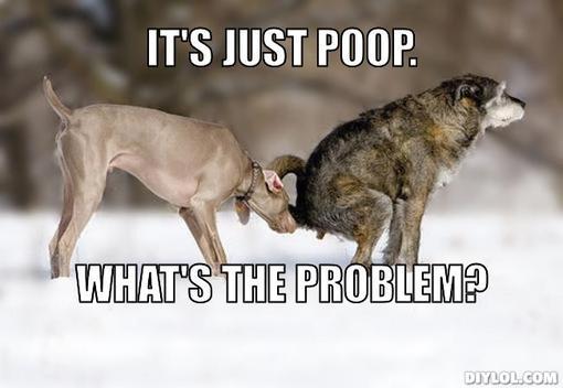 justpoopdogs
