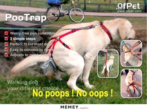 nopoops