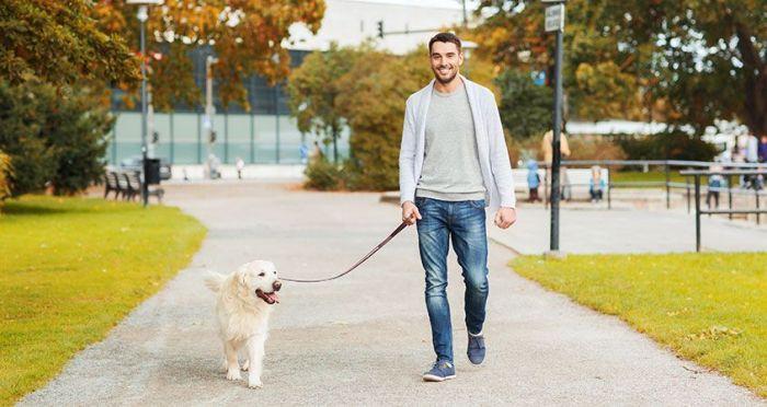 walkingdog
